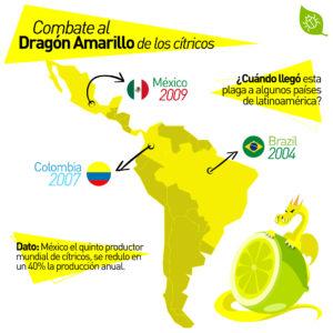 HLB en américa latina