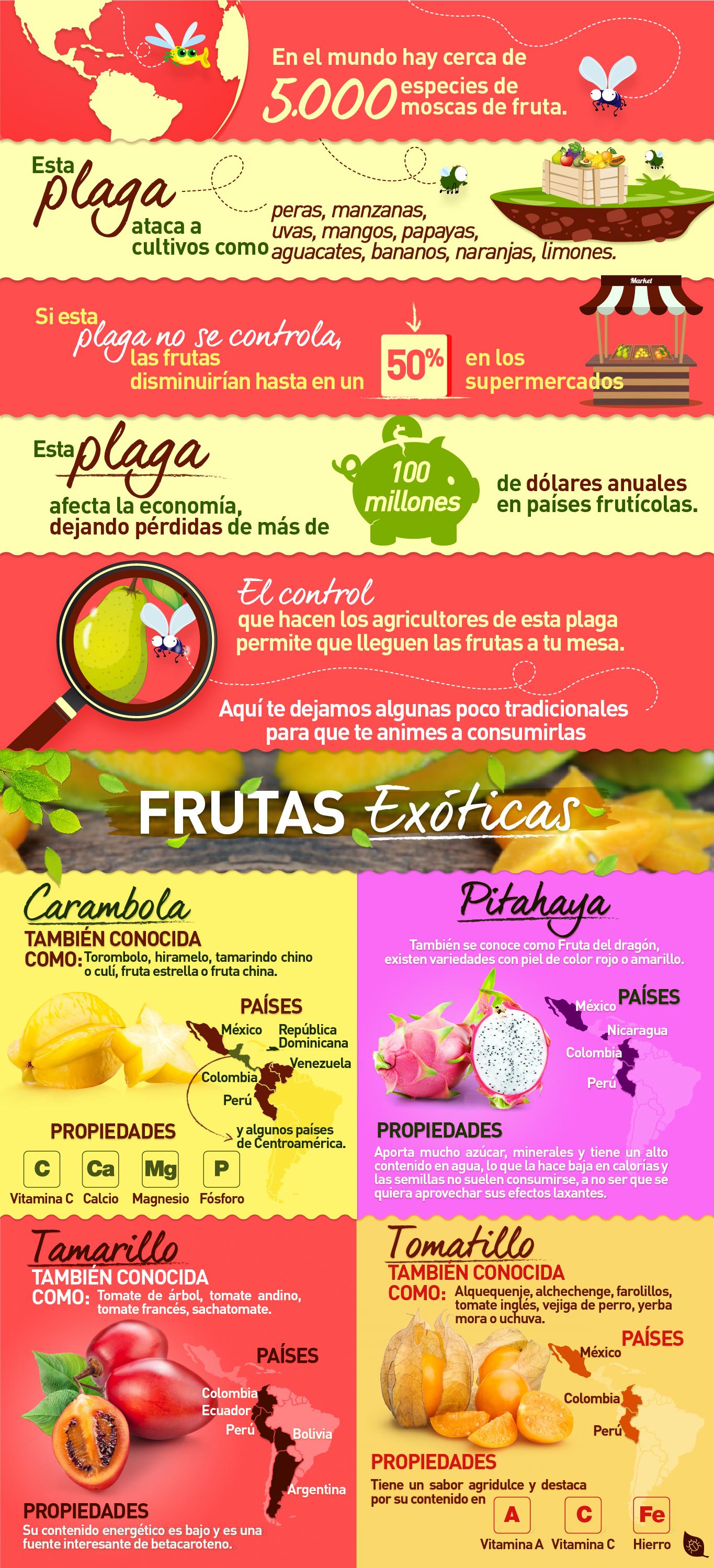 Mosca de la fruta, frutas exóticas